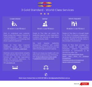 3-gold-standard-services FV
